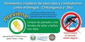 Dengue2016_a_ico