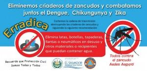 Dengue2016_b_ico