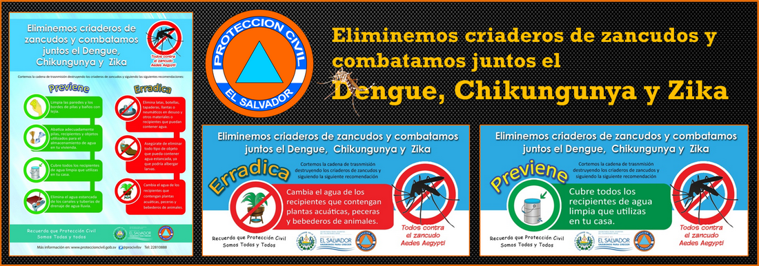Dengue2016_banner