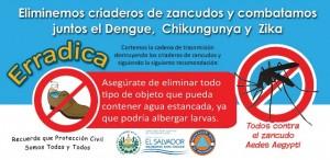 Dengue2016_d_ico