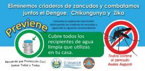 Dengue2016_e_ico