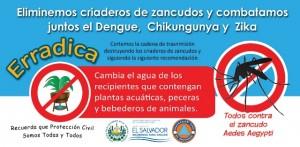 Dengue2016_f_ico