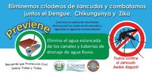 Dengue2016_g_ico