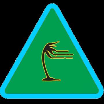 alerta_verde_vientos
