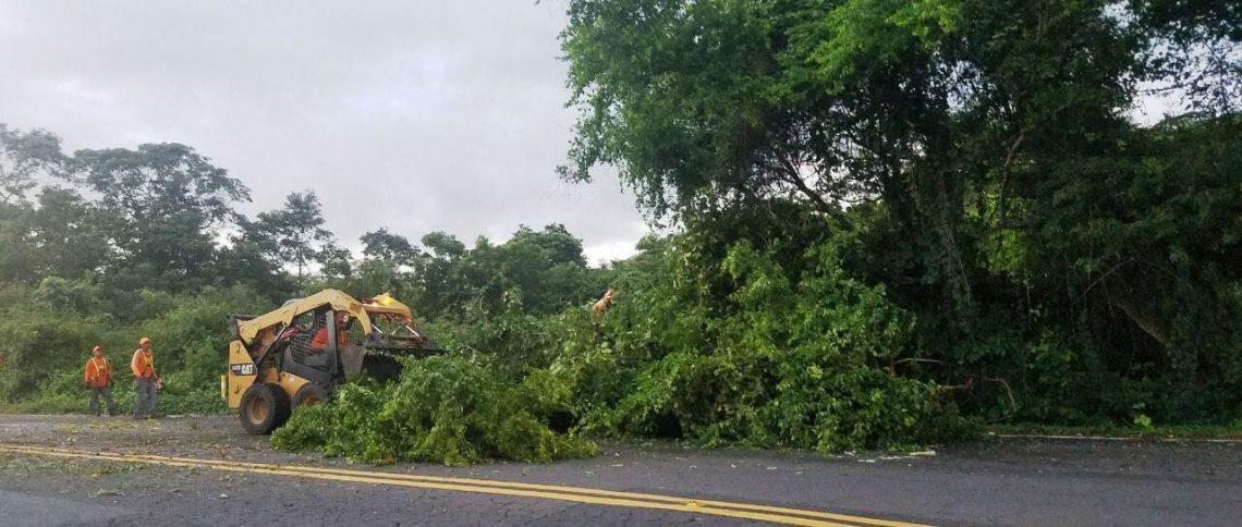 Informe Preliminar de afectaciones por lluvias reportadas al Centro de Operaciones de Emergencias    16/AGOSTO/2017