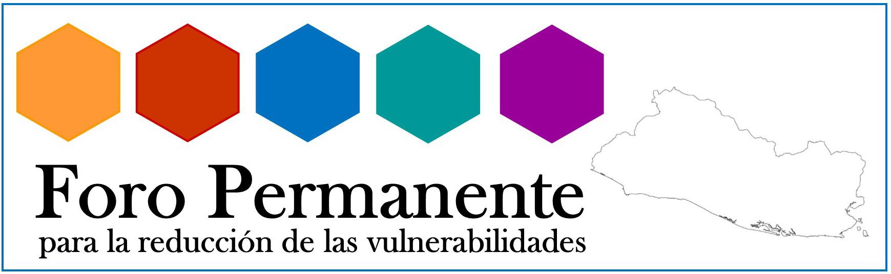 Foro Permanente para la Reducción de Vulnerabilidades, ANTECEDENTES