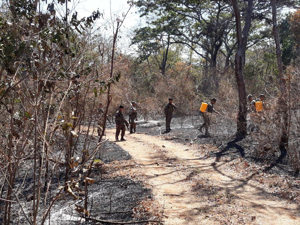 Centro de Operaciones de Emergencias de la Dirección General de Protección Civil coordina labores de extinción del incendio en parque Walter Thilo Deininger #1    15/FEBRERO/2018